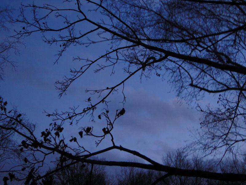 Burridge Twilight