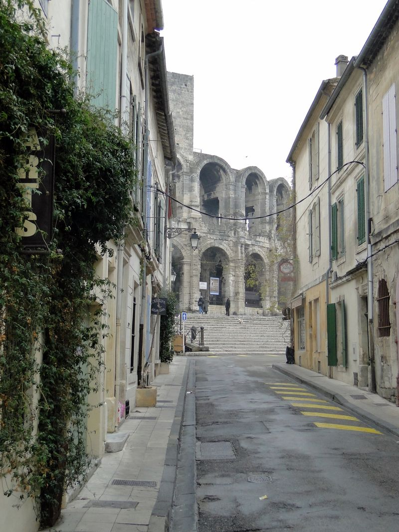 Ivy Arles