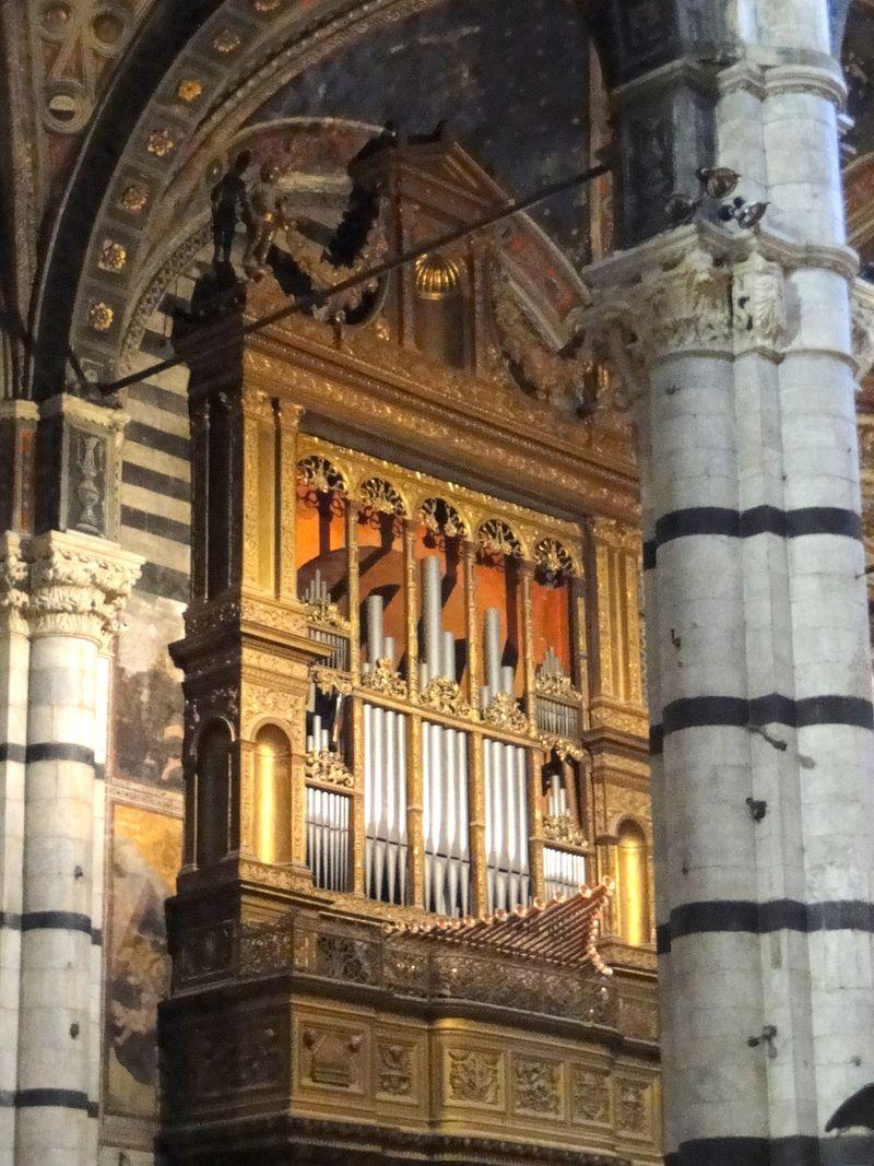 Modest Organ